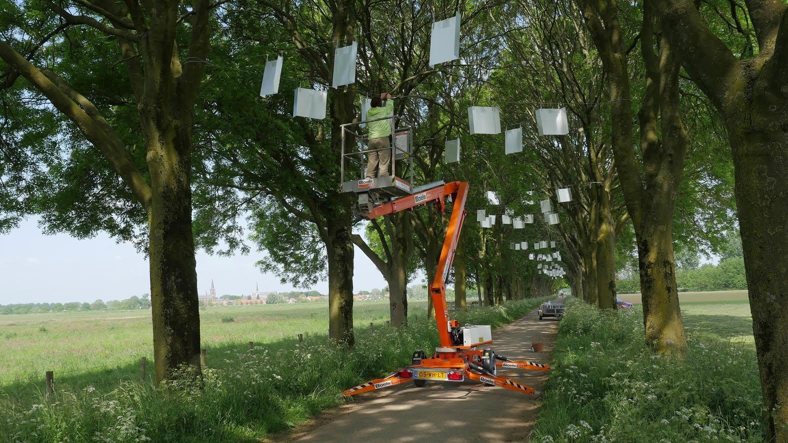 Kunst aan de Maas 2015 2